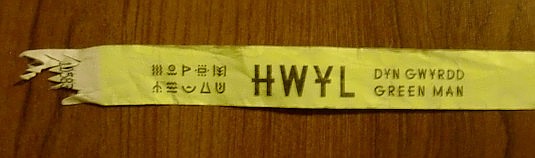 Picture of Hwyl 2014 wristband