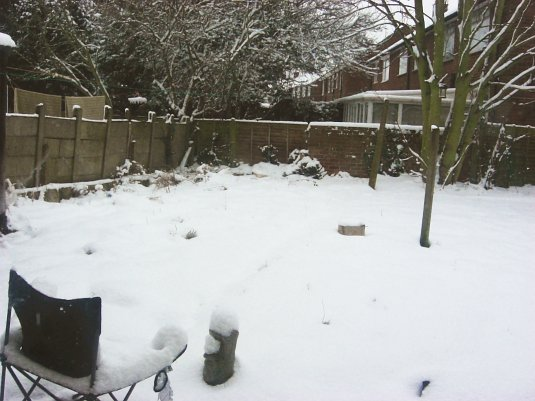 Picture of snow in West London