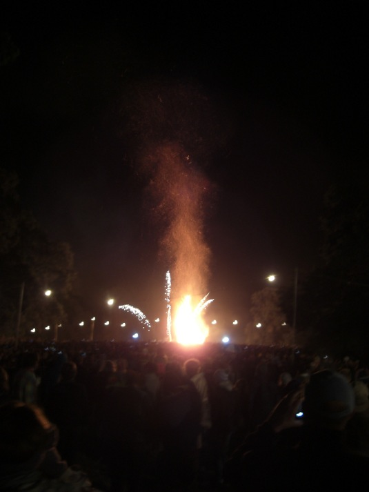 Picture of Green Man effigy 2011 burning